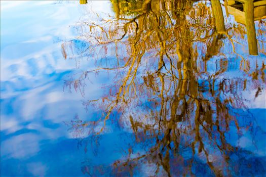 Reflections-5.jpg by Cat Cornish Photography