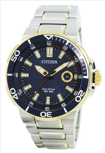 Citizen Endeavor Eco-Drive Diver's 200M AW1424-62L Men's Watch.jpg by orientwatches