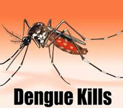Drugs-of-Dengue.jpg by alwayspharma111