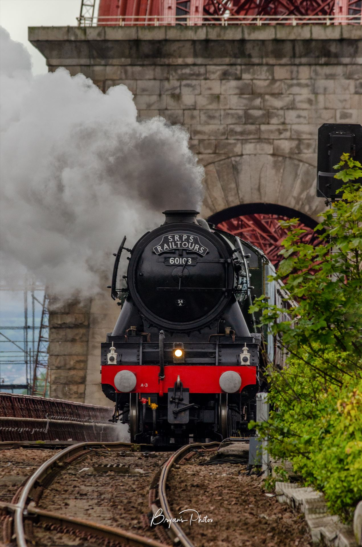 60103 and the Rail Bridge A portrait photograph of the Flying Scotsman taken as it crossed the Forth Rail Bridge approaching North Queensferry. by Bryans Photos