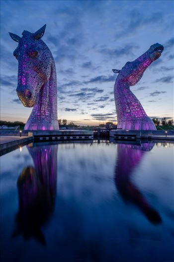 Kelpies by Bryans Photos