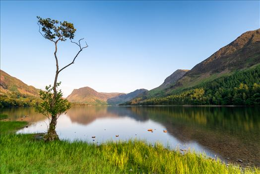 Loan Tree at Buttermere by Bryans Photos