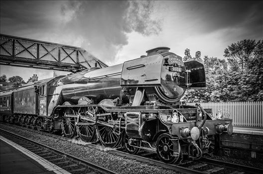 The Scotsman by Bryans Photos