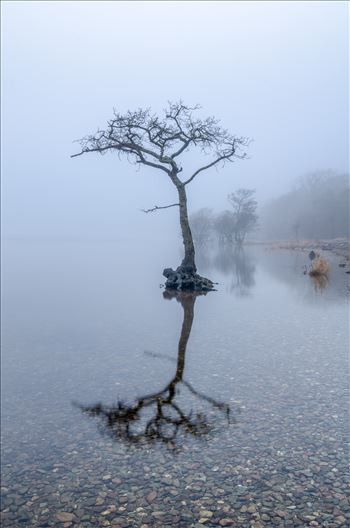 Milarrochy in the Mist by Bryans Photos