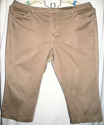 Shorts - Lee 24W 97 percent cotton 3 percent Spandex .jpg by BudgetGeneral