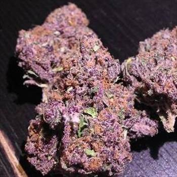 purple-urkle-marijuana-strain1.jpg by Shahbaz90
