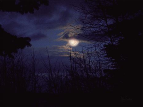 Moonlight Shining Through Clouds  SDC198233 by Snookies Place of Wildlife and Nature