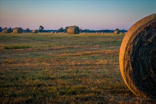 20170819_Hay Field_011.jpg by Charles Smith Photography
