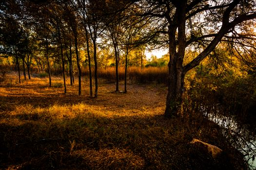 20171104_PepperCreek_011.jpg by Charles Smith Photography