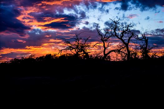 20140112-Enchanted Rock-DSLR-085.jpg by Charles Smith Photography