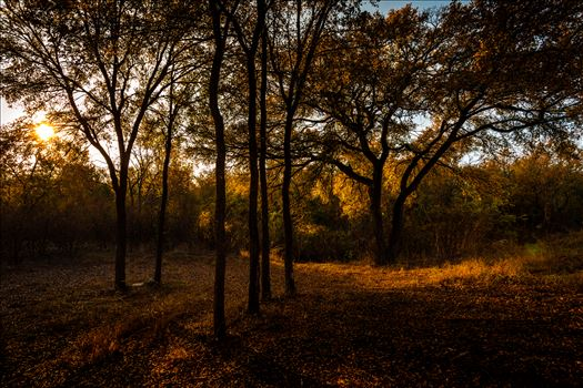 20171104_PepperCreek_014.jpg by Charles Smith Photography