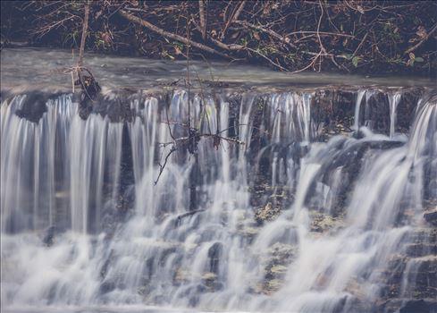 Cooheelee Creek by Craig Smith