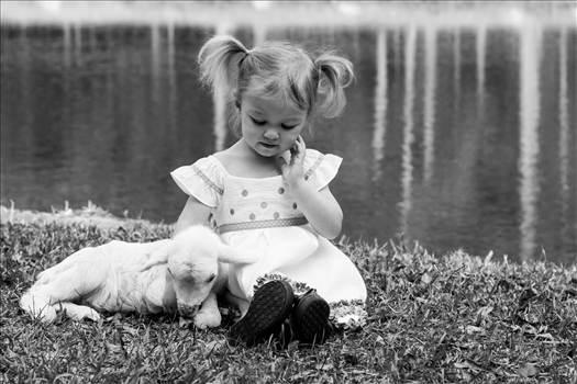 Jocelyn had a little lamb by Craig Smith
