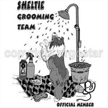 sheltie+groom+team.jpg by DianneD1