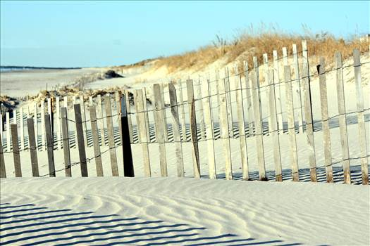 dune fence.jpg by WPC-372