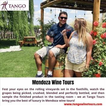 Mendoza Wine Tours by Tangowinetours