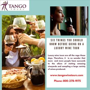 Six Things You Should Know Before Going On A Luxury Wine Tour by Tangowinetours