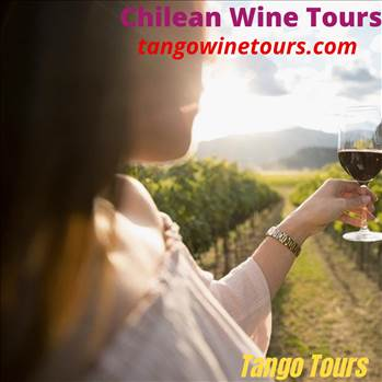 Chilean Wine Tours.gif by Tangowinetours