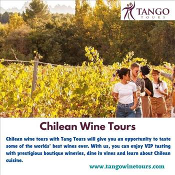 Chilean Wine Tours by Tangowinetours