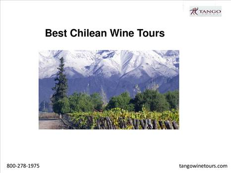 Best Chilean Wine Tours by Tangowinetours