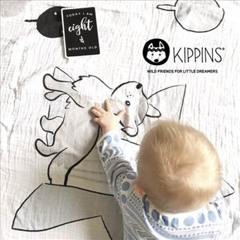 Breathable Baby Blanket - Kippins.jpg by Kippins