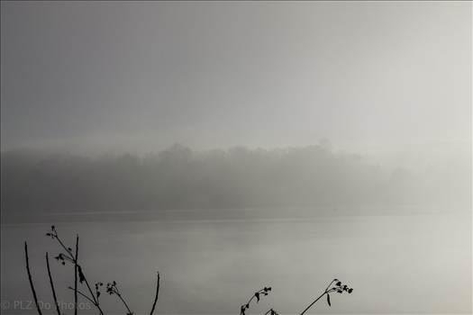 soupy fog-3582.jpg by 853012158068080
