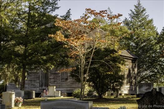 Brown Marsh in the Fall.jpg by 853012158068080