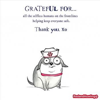 thanks.gif -