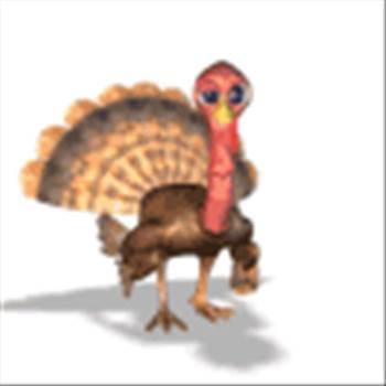 turkey.gif -