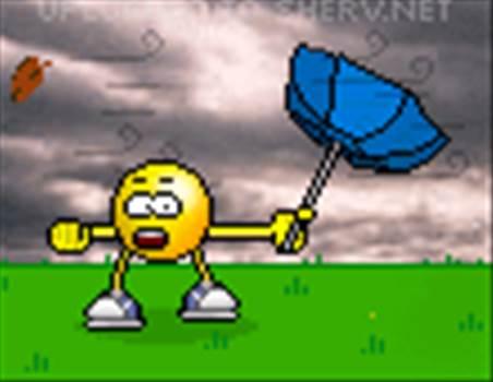 windy.gif -