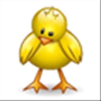 bigbird.gif -