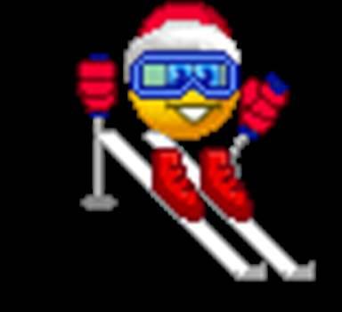 ski.gif -