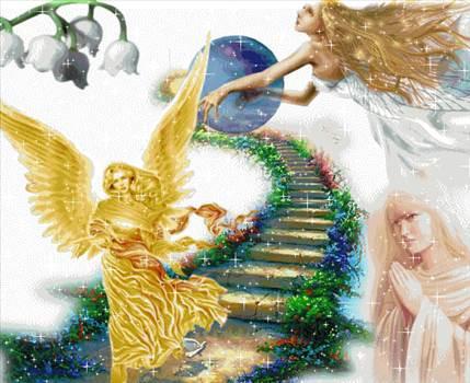 angel3.gif -