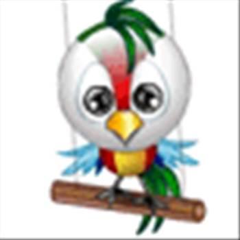 bird.gif -