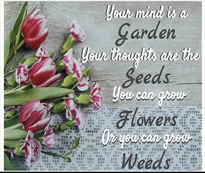 garden.png by Mediumystics