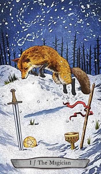 Fox.jpg -