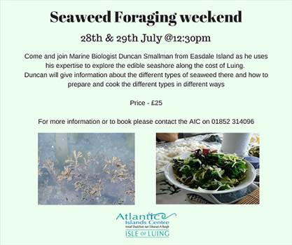 Seaweed Foraging weekend FB.png by Allan