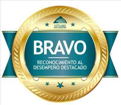 LOGO BRAVO.png by JOSELINE