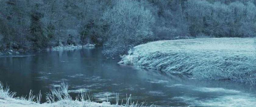 Forest_of_Dean_zps42896d41.jpg by Seductive Hogwarts Mule