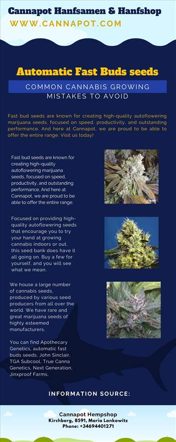 Automatic Fast Buds seeds, Common Cannabis Growing Mistakes to Avoid.jpg by Cannapot