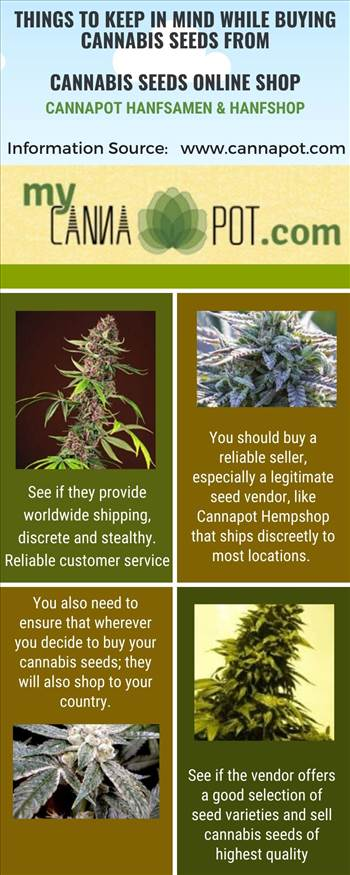 Things to Keep in Mind While Buying Cannabis Seeds from Cannabis Seeds Online Shop.jpg by Cannapot