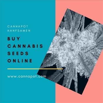 Buy cannabis seeds online (2).jpg by Cannapot