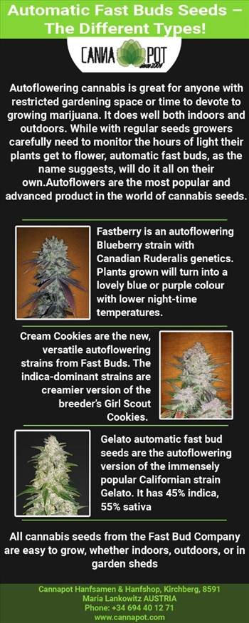 Automatic Fast Buds Seeds– The Different Types!.jpg by Cannapot