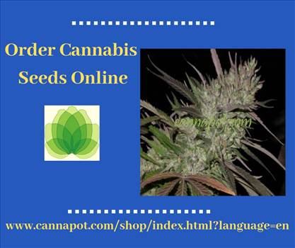 Order Cannabis Seeds Online.jpg by Cannapot
