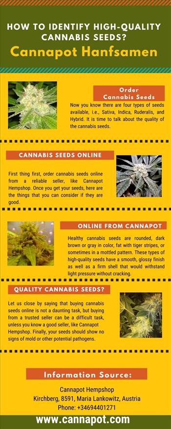 How to Identify High - Quality Cannabis Seeds.jpg by Cannapot