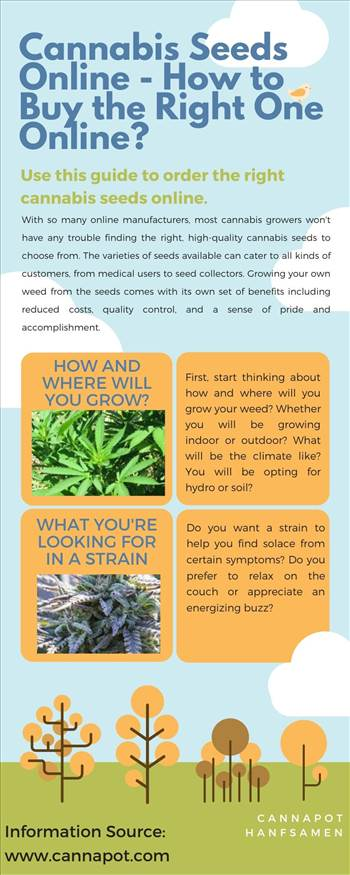 Cannabis Seeds Online - How to Buy the Right One Online.jpg by Cannapot