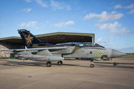 RAF_31_Squadron_Tornado_special_color1.jpg by jay
