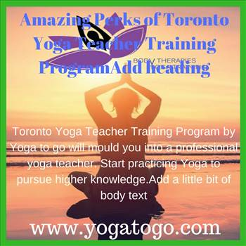 Amazing Perks of Toronto Yoga Teacher Training Program by yogatogo