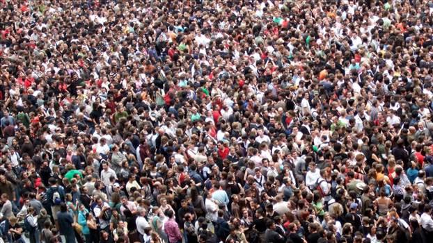 S2B-crowd-header.jpg by Schrodeger Henderson