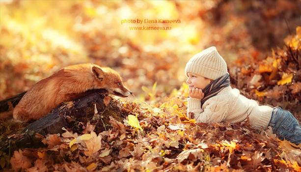 animal-children-photography-elena-karneeva-122__880.jpg by Acef Ebrahimi